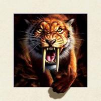 Buy cheap Strong 5d Deep Effect Lenticular Photo Printing 40x40cm Picture Tiger / Wolf product