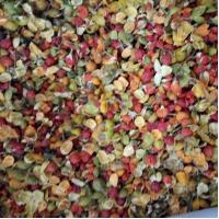 Buy cheap Organic Celastrus orbiculatus Thunb fruits seeds dried for flower tea from wholesalers