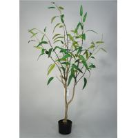 Quality 5 Feet Artificial Decorative Trees Eucalypt Bonsai Easy Care With Pot Base for sale