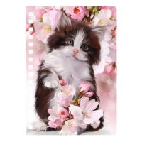 Quality New Design 3D PET Cover Lenticular Spiral A5 Notebook For School And Office Gifts for sale