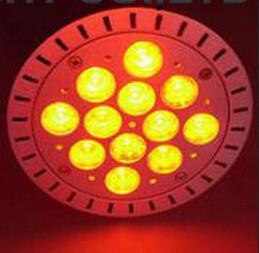 China Warm white color spotlight LED PAR38 on sale