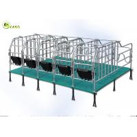 Buy cheap Swine Farm Galvanized Pipe Pig Gestation Stalls / Pregnant Swine Gestation Crates product