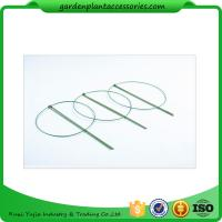 Buy cheap 3 Rings Green Garden Plant Supports , Circular Plant Supports Plastic Coated product