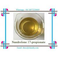 Buy cheap Nandrolone Steroid Propionate Nandrolone 17-propionate for Bodybuilding CAS 7207-9 2-3 product
