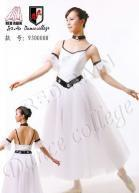 Buy cheap Adult Ballet Tutu product