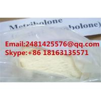 China 99% Purity Trenbolone Steroids Light Yellow Methyltrienolone/Metribolone CAS 965-93-5 on sale