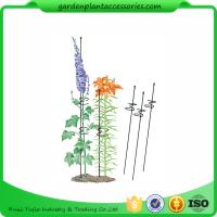"Buy cheap Single Grow Garden Plant Supports / Spiral Plant Support 4"" Z - Rings product"
