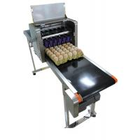 Poultry Egg Date Coding MachineAutomatically Updated With LCD Touching Screen