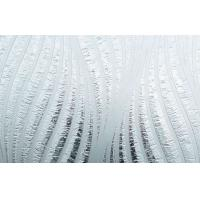 China 6mm Acid Etched Pattern Glass , color etching glass on sale