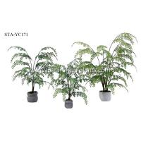 Buy cheap Small Artificial Fern Tree 45CM 65CM 80CM Premium Foliage Realistic Elegant Charming product