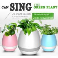Buy cheap Touching Plant Playing Music Flowerpot Bluetooth Speaker, Smart Plant with Piano Sound Music Bluetooth LED Flowerport from wholesalers
