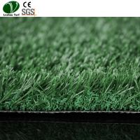 Buy cheap Cricket Pitch PP PE Artificial Backyard Putting Green 35mm Pile Height product