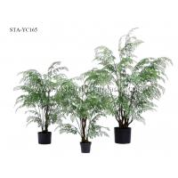 Buy cheap Decorative Artificial Fern Tree Vivid Display Greenery Beautiful Ornate Planter product