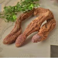 Buy cheap China xinjiang Wild dried caulis songaria cynomorium herb Suo Yang whole plant traditional sex herb for men from wholesalers