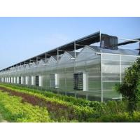 Buy cheap Eco - friendly Bayer Greenhouse Polycarbonate Sheets 4-10mm Thickness Weather Ability product