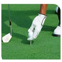 Buy cheap Tennis Court Golf Green Turf Grass Younger Loving Artificial Green Swad product