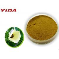Safety Pharmaceutical Grade Okra Extract Powder Activate Male Central Nervous
