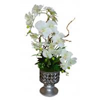 Buy cheap Real Touch Potted Silk Orchids from wholesalers