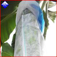 Buy cheap Non Woven Spunbond Polypropylene Fabric For Agriculture Fruit Covering UV Protection product