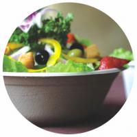 BIO-DEGRADABLE BAGASSE BOWL, HOT AND COLD FOOD, WITH COLVER/LID, SUITABLE FOR HOLDING SALAD, HOT SOUP, RICE, ICE CREAM