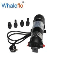China WHALEFLO DP-100M 220v ac 100 psi high pressure electric motor powerful pump /electric water pump on sale