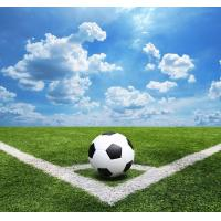 Buy cheap Plastic Flat Football Synthetic Grass Chemical Free Environment Protection product