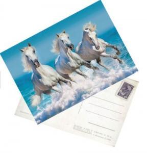 Buy cheap PET plastic lenticular printing 3D postcards manufacturer 3D postcards supplier 3D postcards wholesalers product