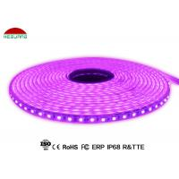 Quality PVC Casing IP68 Waterproof Led Strip Lights SMD5050 DC24V With 2 Years Warranty for sale