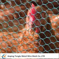 Buy cheap Chicken Wire Mesh Florist Hex Netting 13~50mm Mesh Size for Building or Poultry product