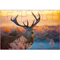 Buy cheap Educational Kids 3D Puzzle Games / 3D Lenticular Printing Jigsaw Puzzles product