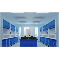 Buy cheap Customized Cleaning Laboratory Equipment Portable Laboratory Fume Hood product