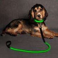 Buy cheap USB Rechargeable Reflective Pet Leash 47 Inches Glowing Dog Accessories product