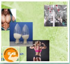 Sex Hormone Steroids Estrogen Powder ,17 Alpha Estradiol Progestogen Powder