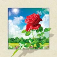 Buy cheap Waterproof Flower Images 5d 3D Lenticular Pictures 40x40cm For Restaurant product