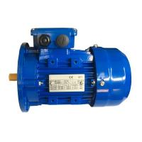 Buy cheap MS 56 Frame 3 Phase Induction Motor With Flexible Foot Amount from wholesalers