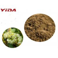 Buy cheap YIDA GMP Certification Dodder Seed Extract Powder Remedy Sexual Problems from wholesalers