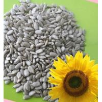 Buy cheap 2011 bakery sunflower seeed kerenls product