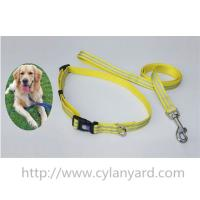China Choosing the right dog collars and leads for your dog, we sell dog collar and dog lead set on sale