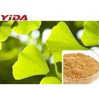 Ginkgo Biloba Leaf Extracted Natural Weight Loss Supplements Powder C15H18O8