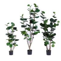 Buy cheap Multi Stems Artificial Outdoor Plants Nearly Natural Silk  Polyscias Balfouriana Bailey product
