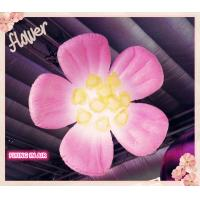 Oxford Cloth Lighting Inflatable Flower for Stage and Wedding Decoration