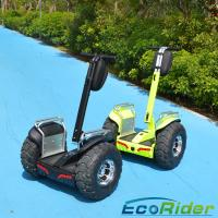 19 Inch 2 Wheel Electric Scooter 2000w Outdoor Short - Distance Travel