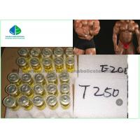 Buy cheap Test Enanthate Powder Legal Injectable Yellow Liquid Oil Steroids Hormone CAS 315 37 7 For Muscle Gaining product