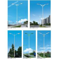 China 10Meter city roadgalvanized shockproof double arm Q235 steel 250W high pressure sodium lamp street light on sale