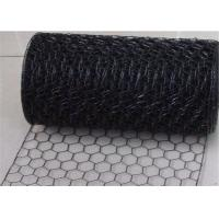 Professional Weaving 18 Gauge Electric Galvanized Black Vinyl Chicken Wire for Cages