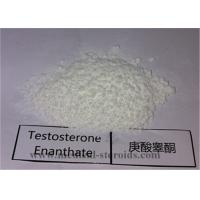 China 99.5% Purity USP Standard Steroid Testosterone Enanthate CAS 315-37-7 for Bodybuilding on sale