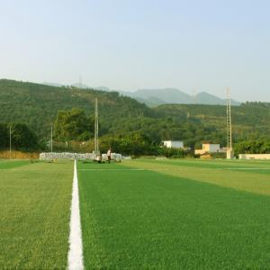 Buy cheap 55mm 60mm 50mm Artificial Grass Soccer Field Sports Turt Flooring Popular Style product