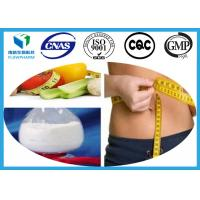 China Pharma Grade Weight Loss Steroids , fat cutter steroids CAS 282526-98-1 Cetislim on sale