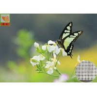 Anti - Butterfly Garden Mesh Netting For Protect Crops And Vegetables 40g/Sqm
