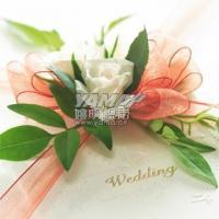 Buy cheap fashion organza ribbon manufacturer product